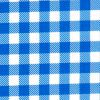 Oilcloth in Blue Gingham